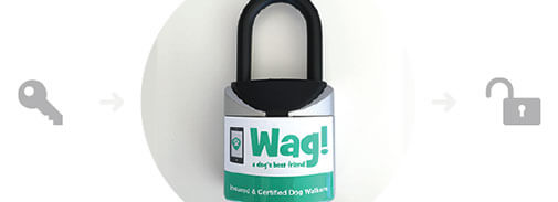 Wag! White Label Manufacturing Case Study Lock - Intrepid Sourcing